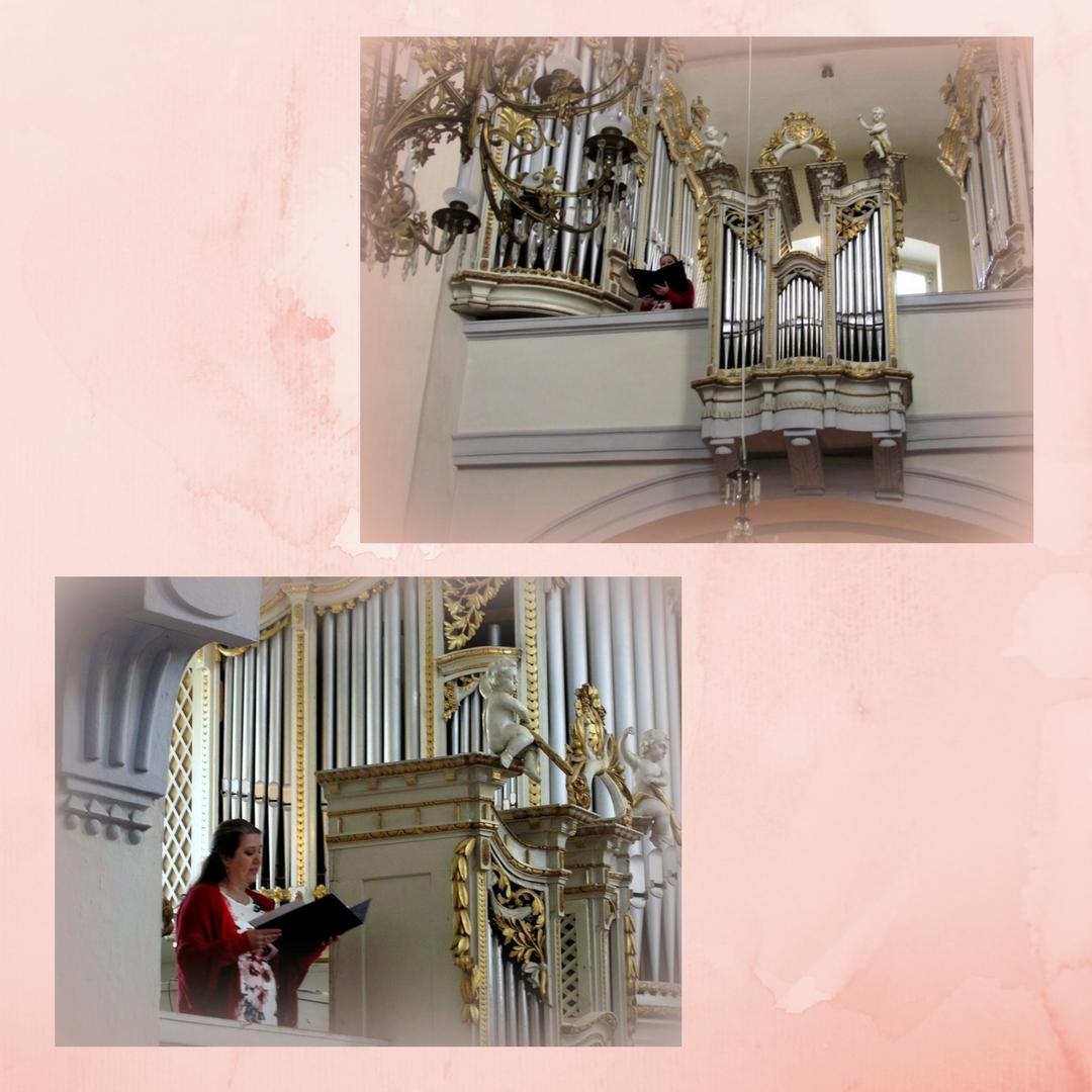 spev a organ2