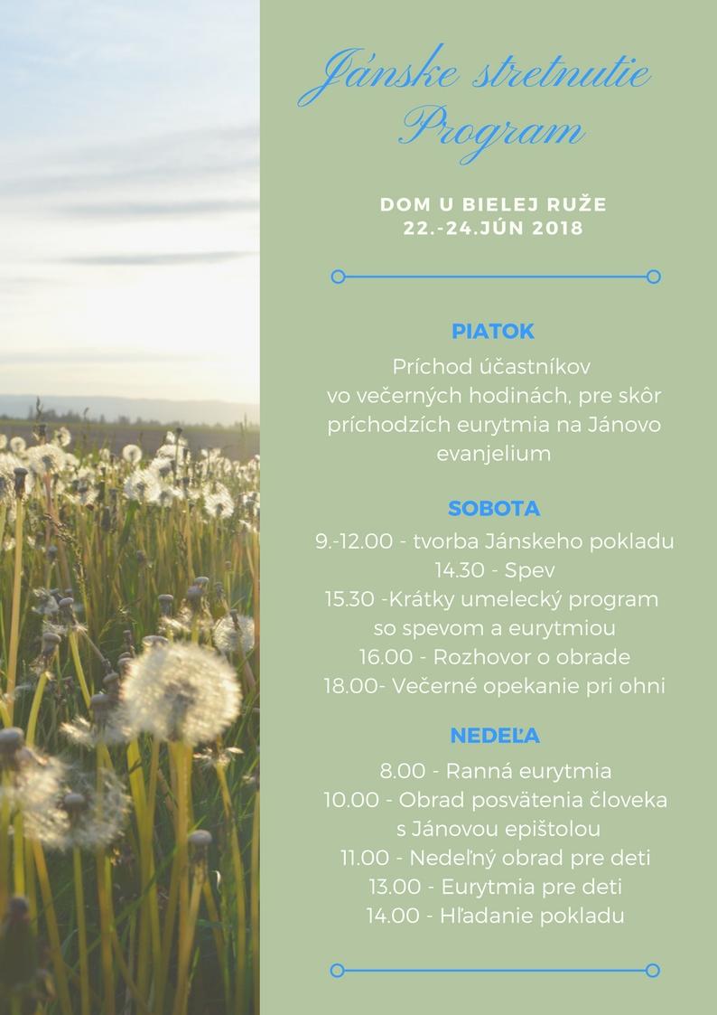 program (2)