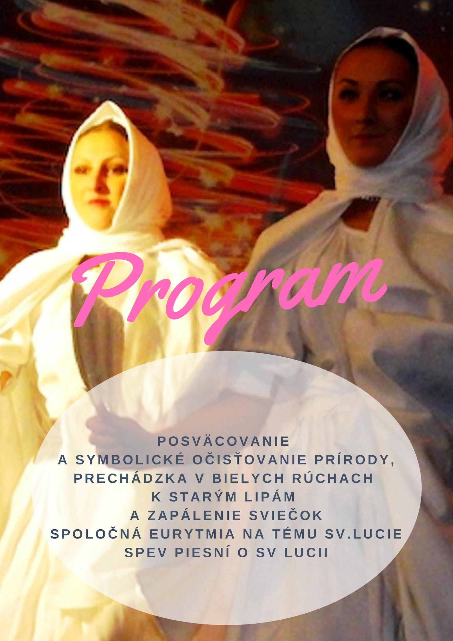 program)